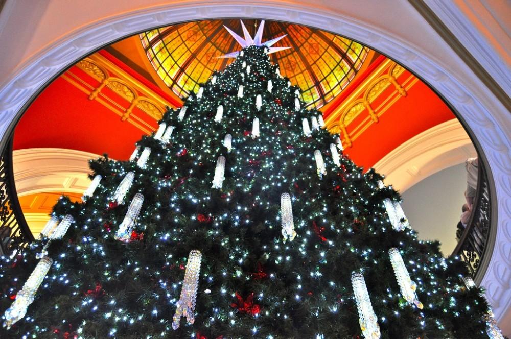 15_12_22 Weihnachtsbaum flickr