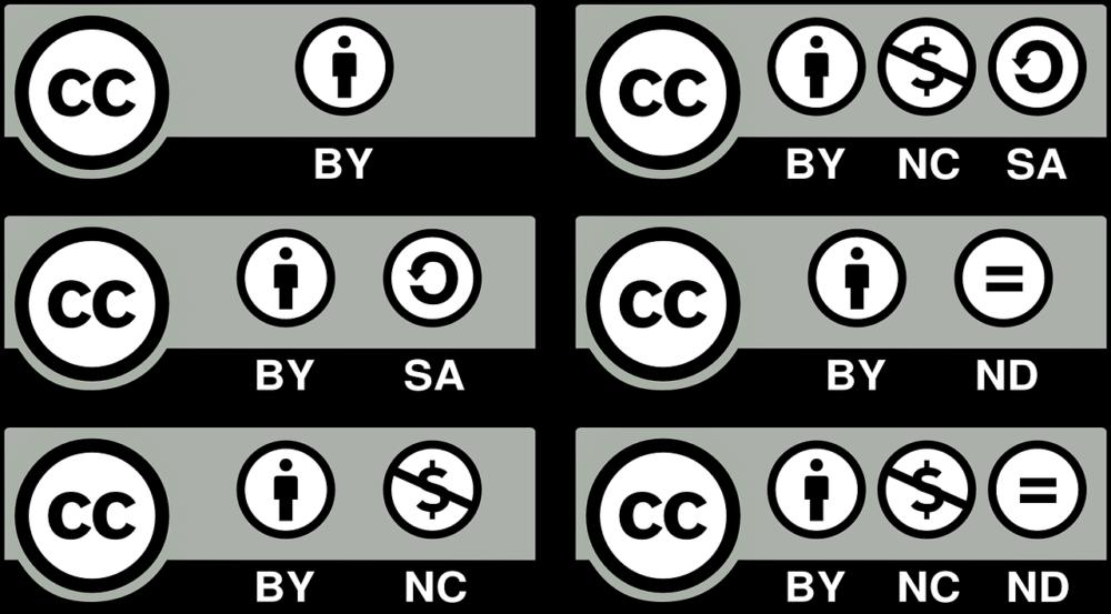 Schon Bilder aus dem Netz können für erhebliche Lizenzstreitigkeiten führen. Hier die Lizenz-Hinweise für die Creative Commons Lizenzen. Bei Software wird es noch viel komplexer.Quelle: Pixabay/progressor